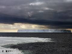 ross-sea-iceberg